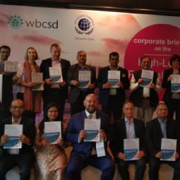 Corporate Briefing on the High-Level Political Forum